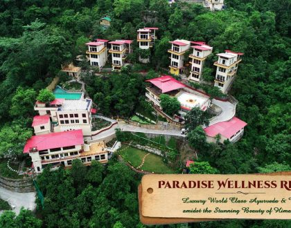 Paradise Wellness Retreat - Veda5 Luxury World Class Ayurveda and Yoga in Rishikesh Himalayas India